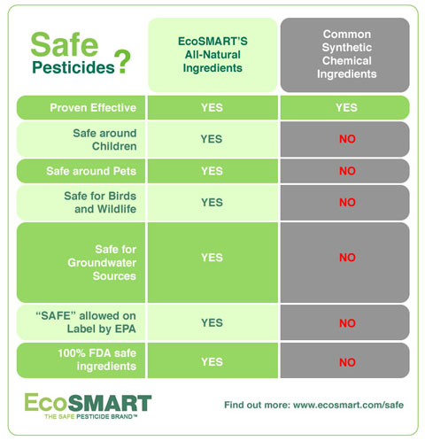 EcoSMARTSafeIngredients