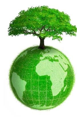 Planeta i stablo