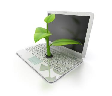 Eco Mobile and Broadband