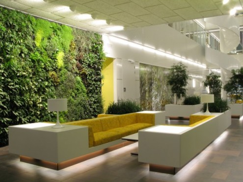 Creating a Green Work Environment That Will Boost Office Morale