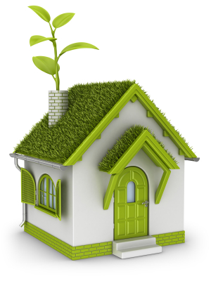 7 Ways to Be More Eco-Friendly at Home 2011