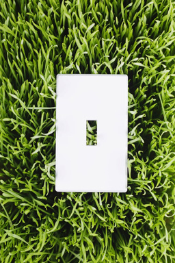 10 Simple Steps To Make Your Business More Green