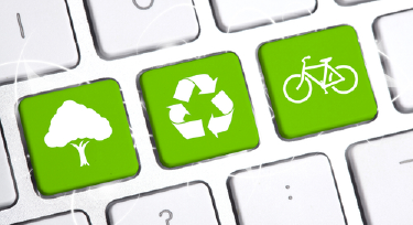 Waste Not, Want Not: Recycling In Your Office