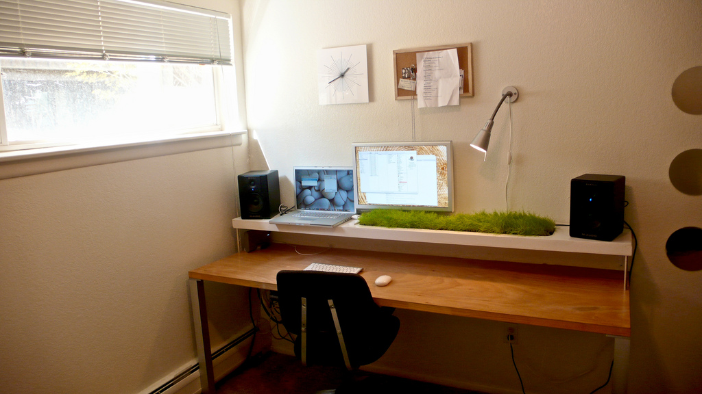 The Power of Green in the Office Space