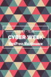 CyberWeek Deals: WordPress Maintenance