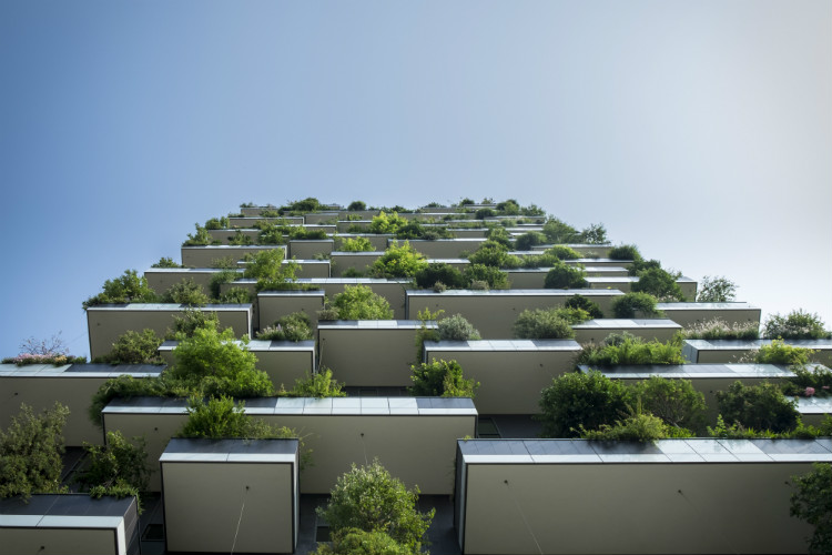 Sustainable Business Practices for 6 Popular Industries