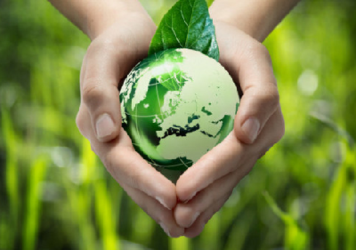 Better Eco Friendly Choices for Your Business in 2017