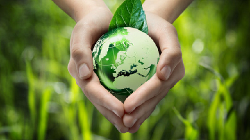 Better Eco Friendly Choices for Your Business and Life
