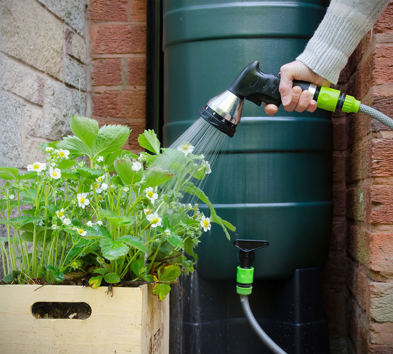 Why Rainwater Harvesting is a Viable Solution