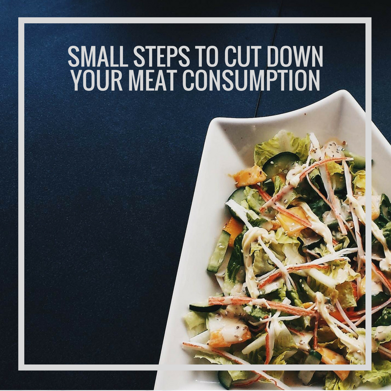 Small Steps to Cut Down Your Meat Consumption