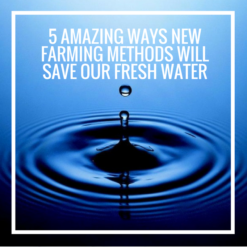 5 Amazing Ways New Farming Methods Will Save Our Fresh Water