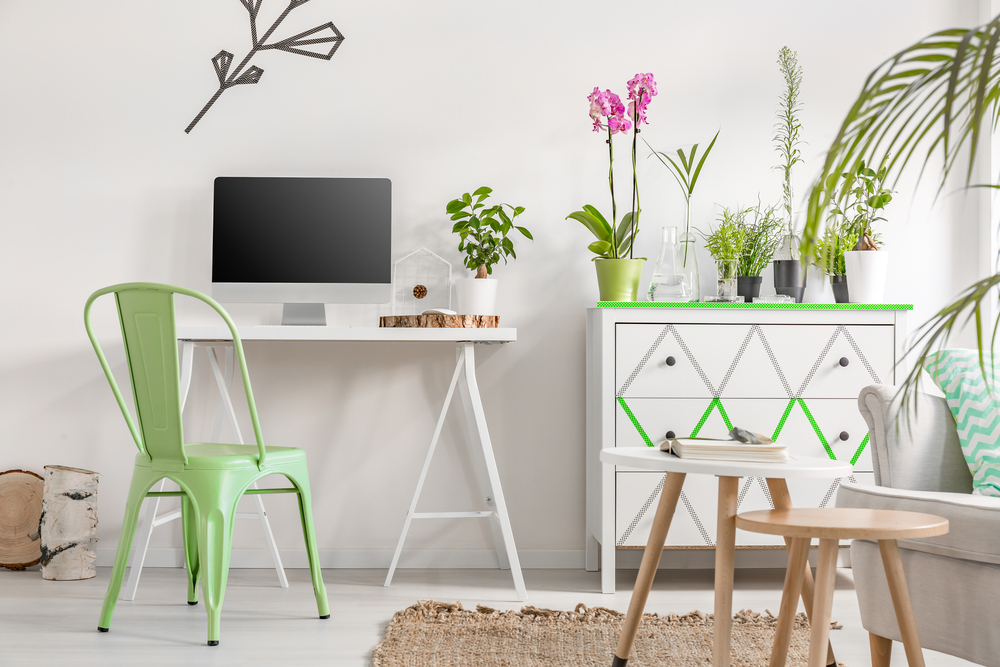 5 Ways You Can Love the Environment both at Home and the Office