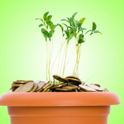 Ten Simple Ways to Go Green On A Budget