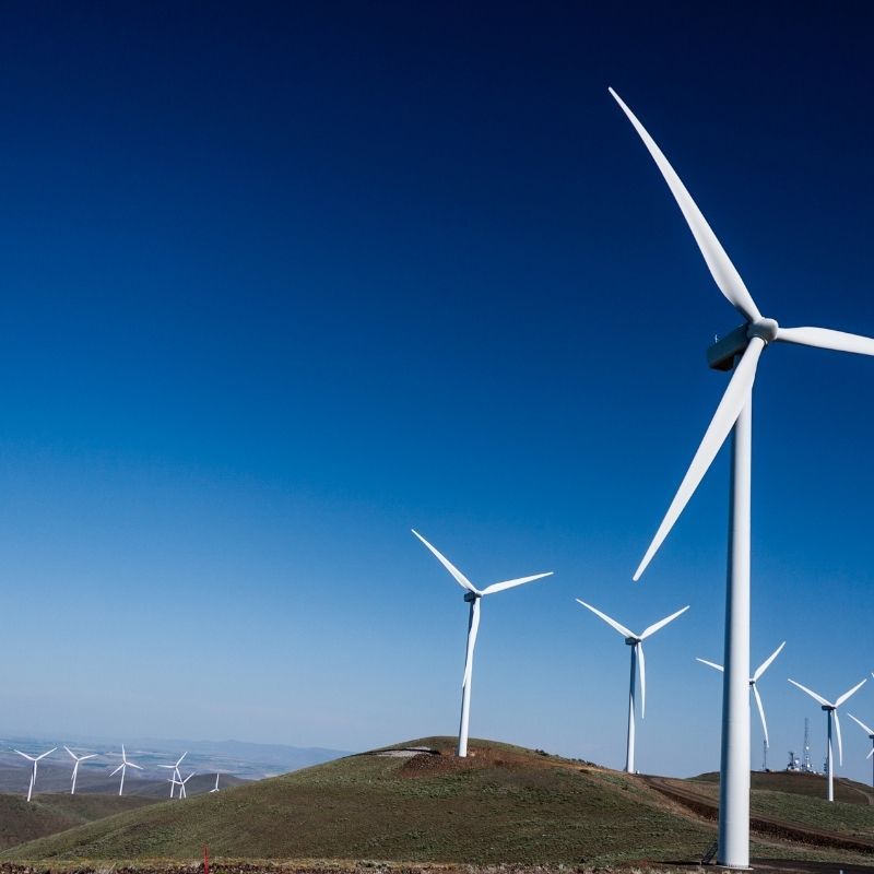 Which Renewable Energy Source Has the Most Promise?