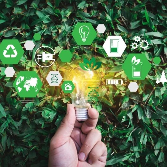 5 Tips for Implementing Sustainability Practices as a Small Business